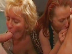 amateur, blowjob aktion, schwanzlutschen, fellation, ficken