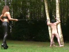 Busty mistress in latex ties slave to tree and whips him before sucking and fucking bbc