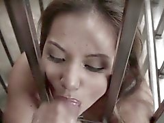 Caged bdsm asian cock and ball sucking