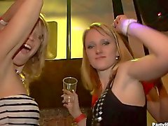 verein, geile girls, nachtclub, partei, party girls