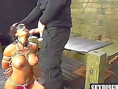 Busty milf Alexa Pierce tied up and disgraced like a slut