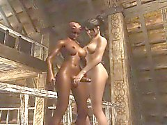 Fun With A Futa - Exotic 3D hentai adult archive
