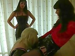 homosexuell, bdsm, crossdresser