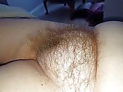 wife has a real chubby round hairy pussy mound
